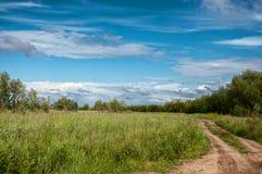 Strada attraverso un campo con erba verde Fotografie Stock
