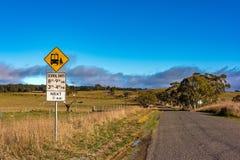 Strada australiana di entroterra con il fanale di arresto dello scuolabus Fotografia Stock