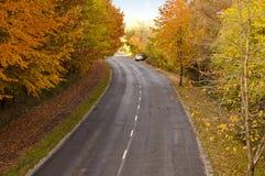 Strada in autunno Fotografia Stock Libera da Diritti
