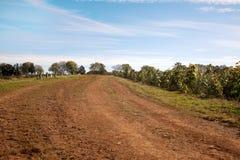 Strada aziendale dell'argilla rossa con cielo blu Fotografia Stock Libera da Diritti