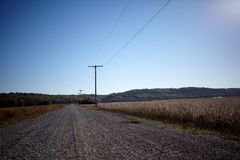 Strada aziendale della sporcizia attraverso i campi del fagiolo della soia Fotografia Stock Libera da Diritti