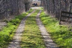Strada aziendale rurale fotografie stock