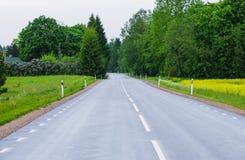 Strada bagnata accanto al campo di colpi secchi Fotografie Stock