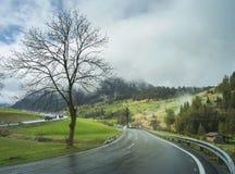 Strada bagnata moderna nel giorno di primavera dopo pioggia Immagine Stock