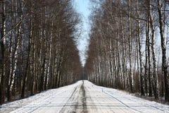 Strada bianca Immagini Stock