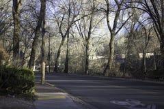 Strada campestre Fotografia Stock Libera da Diritti