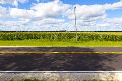 Strada campestre americana Immagine Stock