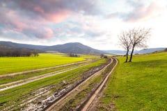 Strada campestre attraverso il campo un giorno piovoso della molla Fotografie Stock
