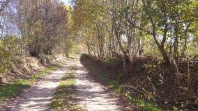 Strada campestre attraverso il villaggio di Ryndevo video d archivio
