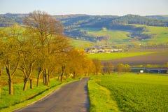 Strada campestre attraverso le colline verdi Fotografia Stock Libera da Diritti