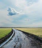Strada campestre bagnata all'orizzonte nuvoloso Immagini Stock Libere da Diritti