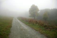 Strada campestre che va dentro alla nebbia Fotografia Stock