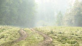 Strada campestre curva vuota nel paesaggio della foschia di primo mattino Immagine Stock Libera da Diritti