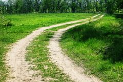Strada campestre d'avvolgimento alla foresta il giorno di estate fotografie stock