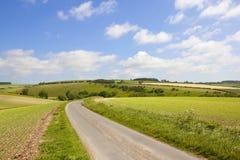 Strada campestre dei wolds di Yorkshire Fotografia Stock