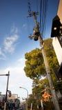Strada campestre del Giappone Fotografia Stock