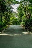 Strada campestre dell'asfalto Immagine Stock