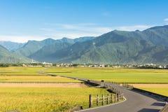 Strada campestre dell'azienda agricola e della risaia Immagine Stock Libera da Diritti