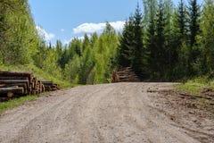 strada campestre della ghiaia in foresta verde con i tronchi di albero in grandi mucchi dal lato fotografie stock