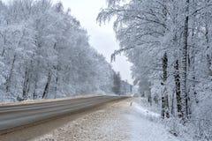 Strada campestre della neve Fotografia Stock