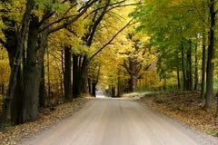 Strada campestre di autunno Immagini Stock Libere da Diritti