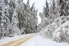 Strada campestre di inverno Fotografia Stock