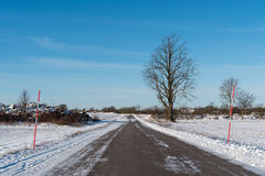 Strada campestre di Snowy con i pali della neve Fotografia Stock Libera da Diritti