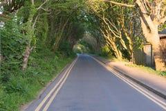 Strada campestre & doppie linee gialle Fotografia Stock Libera da Diritti