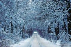 Strada campestre in inverno Fotografia Stock
