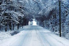 Strada campestre in inverno Immagine Stock Libera da Diritti