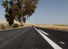 Strada campestre, Jerez, Andalusia, Spagna Fotografia Stock