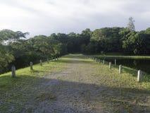 Strada campestre nei precedenti del cielo e della foresta Fotografia Stock Libera da Diritti