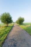 Strada campestre nella fase iniziale una mattina nebbiosa Immagini Stock