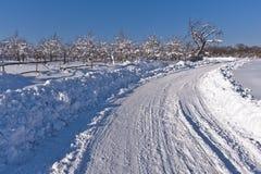 strada campestre nella neve immagini stock libere da diritti