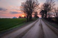 Strada campestre non pavimentata allineata albero al tramonto Immagine Stock Libera da Diritti