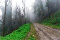 Strada campestre protetta in nebbia Immagini Stock Libere da Diritti