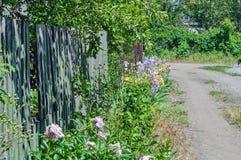 Strada campestre, recinti e letti di fiore, un giorno di estate soleggiato Immagini Stock Libere da Diritti