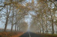 Strada campestre verso la fine della mattina di autunno, Adelaide Hills Fotografia Stock Libera da Diritti