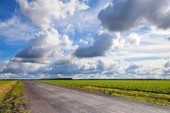 Strada campestre vuota dell'asfalto con il cielo nuvoloso Immagine Stock