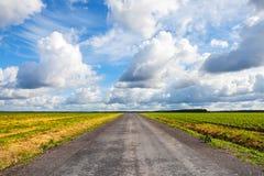 Strada campestre vuota dell'asfalto con il cielo nuvoloso drammatico Fotografia Stock