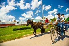 STRADA CENTRALE, CUBA - 6 SETTEMBRE 2015: Cavallo e un carretto Immagini Stock Libere da Diritti