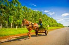 STRADA CENTRALE, CUBA - 6 SETTEMBRE 2015: Cavallo e un carretto Immagine Stock Libera da Diritti