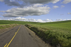 Strada che gira a destra Fotografia Stock
