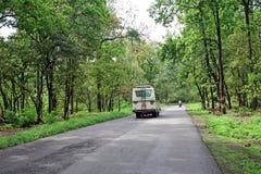 Strada che passa attraverso la foresta himalayan della riserva Fotografie Stock Libere da Diritti