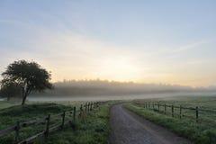 Strada che sparisce di mattina nebbia fotografia stock