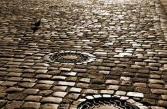 Strada con i blocchi di pietra pavimentati Immagini Stock Libere da Diritti