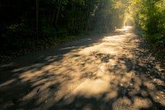 Strada con i raggi di sole fantastici del mornin Fotografia Stock Libera da Diritti