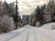 Strada con l'inverno Fotografia Stock Libera da Diritti