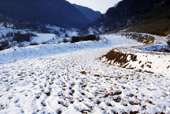 Strada con neve Immagine Stock