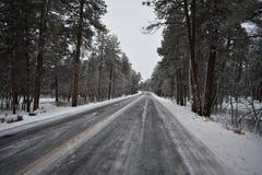 Strada congelata Fotografie Stock Libere da Diritti